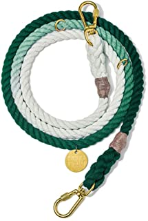 product image for Found My Animal Teal Ombre Cotton Rope Dog Leash, Adjustable Medium