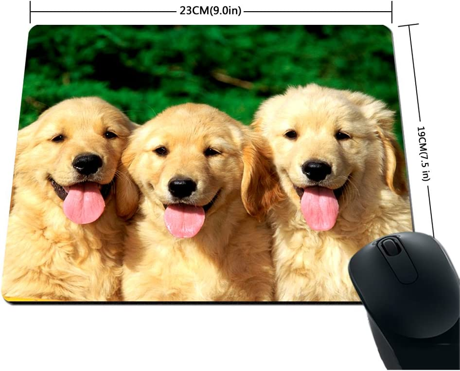 Golden Retriever dogs puppies pets Mouse Pads Customized Made to Order Support Ready 9 7//8 Inch X 7 7//8 Inch X 1//16 Inch 200mm 250mm Eco Friendly Cloth with Neoprene Rubber Liil Mouse Pad Desktop Mousepad Laptop Mousepads Comfortable Computer Mou 2mm