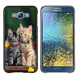 "Be-Star Único Patrón Plástico Duro Fundas Cover Cubre Hard Case Cover Para Samsung Galaxy E7 / SM-E700 ( Gatito lindo del bebé del gato verde peludo mascotas"" )"