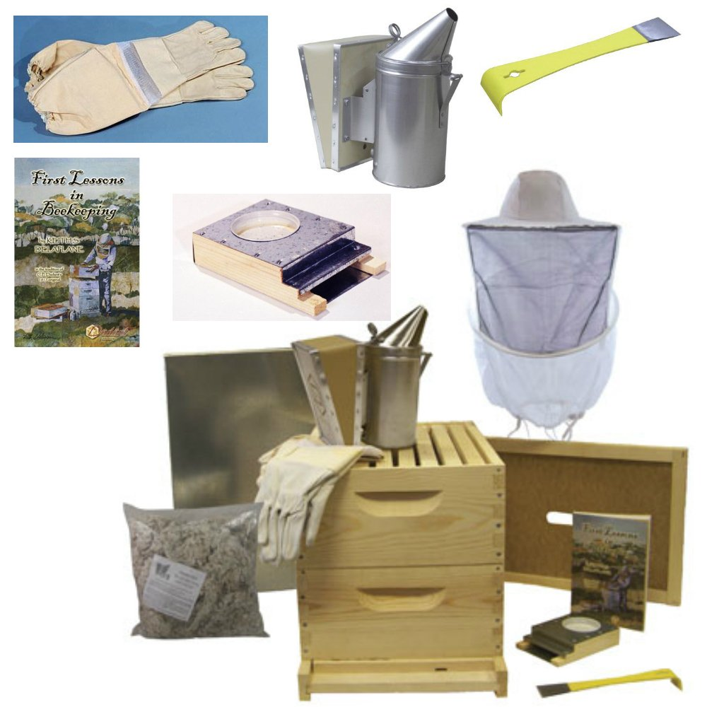 Deluxe Beehive Starter Kit - Premium Bee Hives for Beginners and Pros and All the Beekeeping Supplies You Need, 8 Frames by BuildaBeehive.com