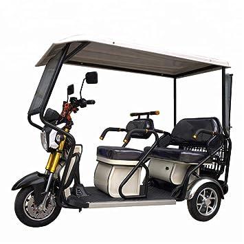 Amazon.com: SEADOSHOPPING - Mini carro eléctrico de 3 ruedas ...