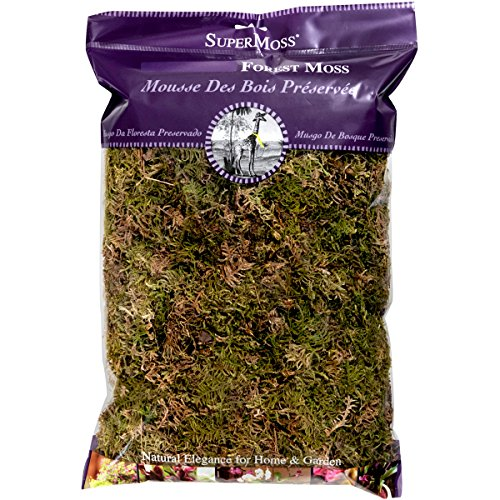 SuperMoss (21577) Forest Moss Dried, Natural, -