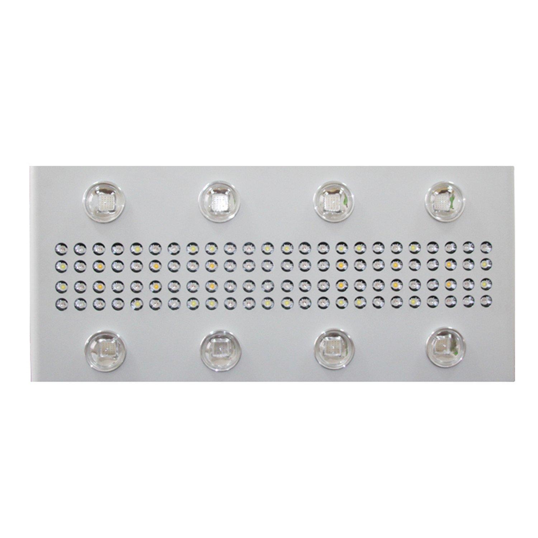 Amazon.com : GR Noah 8S LED Grow Light 1200W Full Spectrum for ...