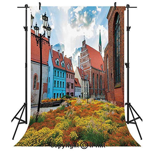 Victorian Decor Photography Backdrops,Old City Riga Latvia Capital with Historical Buildings Medieval Town Image Decorative,Birthday Party Seamless Photo Studio Booth Background Banner 6x9ft,Multicolo ()
