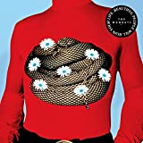 61TdsqDdzaL. SL160  - The Wombats - Beautiful People Will Ruin Your Life (Album Review)