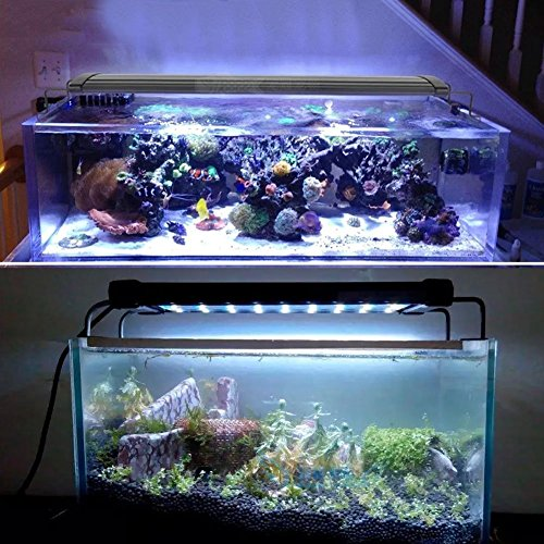 Mingdak led aquarium light fixture for fish tanks for Small fish tanks for sale