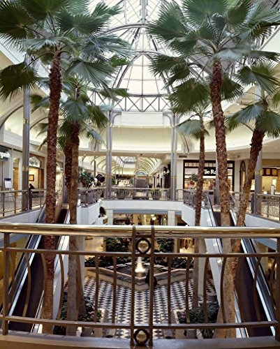 Photograph - Tysons Corner Center shopping mall, Tysons Corner, Virginia- Fine Art Photo Reporduction 32in x 44in (Two Mall Tysons)