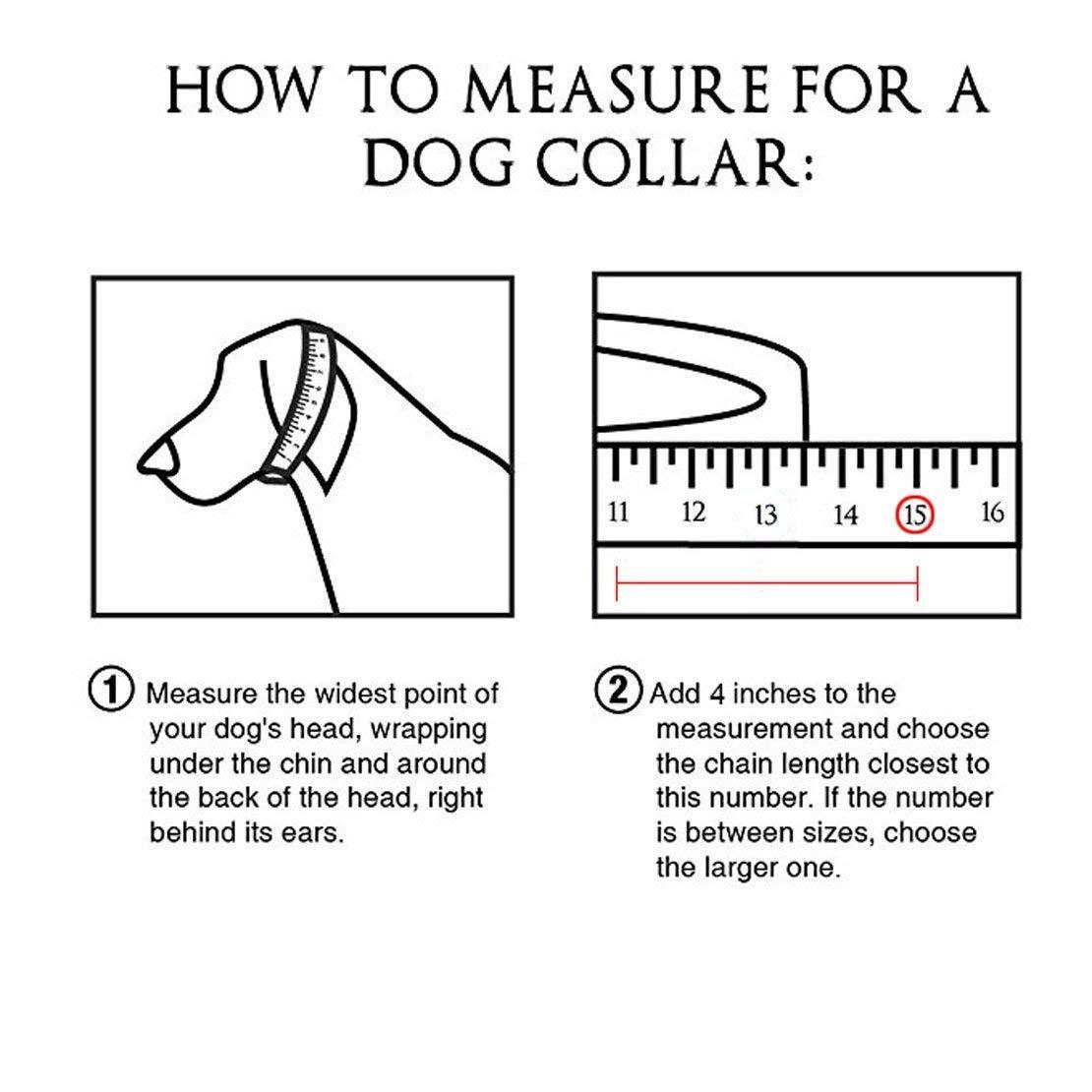 Best for Large Dogs: Pitbull Doberman Bulldog Stainless Steel Dog Collar 15mm 22 Fancy Slip Chain