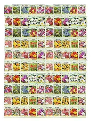 Set of 100 Assorted Valley Green Flower Seed Packets! Flower Seeds in Bulk - 20+ Varieties Available! by Valley Greene