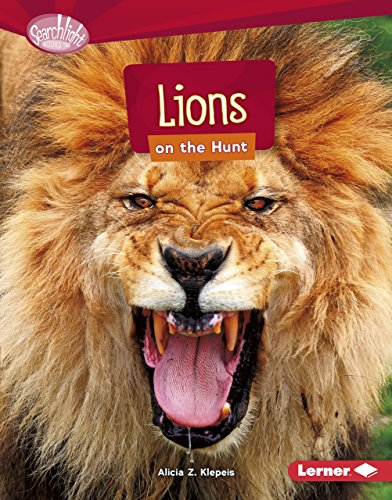 Lions on the Hunt (Searchlight Books: Predators) by Lerner Publications