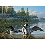 Common Loons, A 1000 Piece Jigsaw Puzzle By Cobble Hill by Cobble Hill