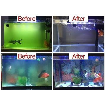 Fesjoy 7W Luz del Acuario UV Lámpara Germicida Agua Limpia Verde Algas Bacterias Transparente a Prueba de Agua Lámpara Sumergible UV para Pequeños Acuarios: ...