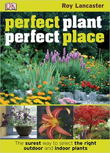 The Surest Way to Select the Right Outdoor and Indoor Plants Perfect Place Perfect Plant