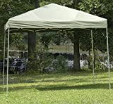 Cheap Insta-Stand Shade-Maker Canopy (Walls not included)