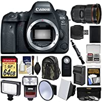 Canon EOS 6D Mark II Wi-Fi Digital SLR Camera Body with EF 24-70mm f/2.8 L II USM Lens + 64GB Card + Backpack + Flash + Video Light Kit