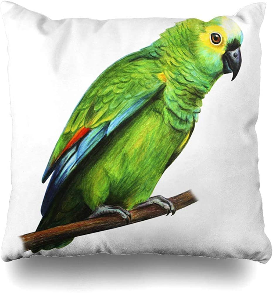 """Decorative Throw Pillow Covers Tropical Red Green Brazilian Parrot in Drawing Amazona Blue Spot Realistic Amazonian On Home Decor Pillowcase Square Cute 18"""" x 18"""" Cushion Case"""