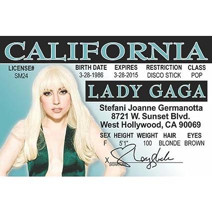 Amazon Fun ca amp; Nroidga 4 Kitchen Lady License Gaga's Signs Home Driver's
