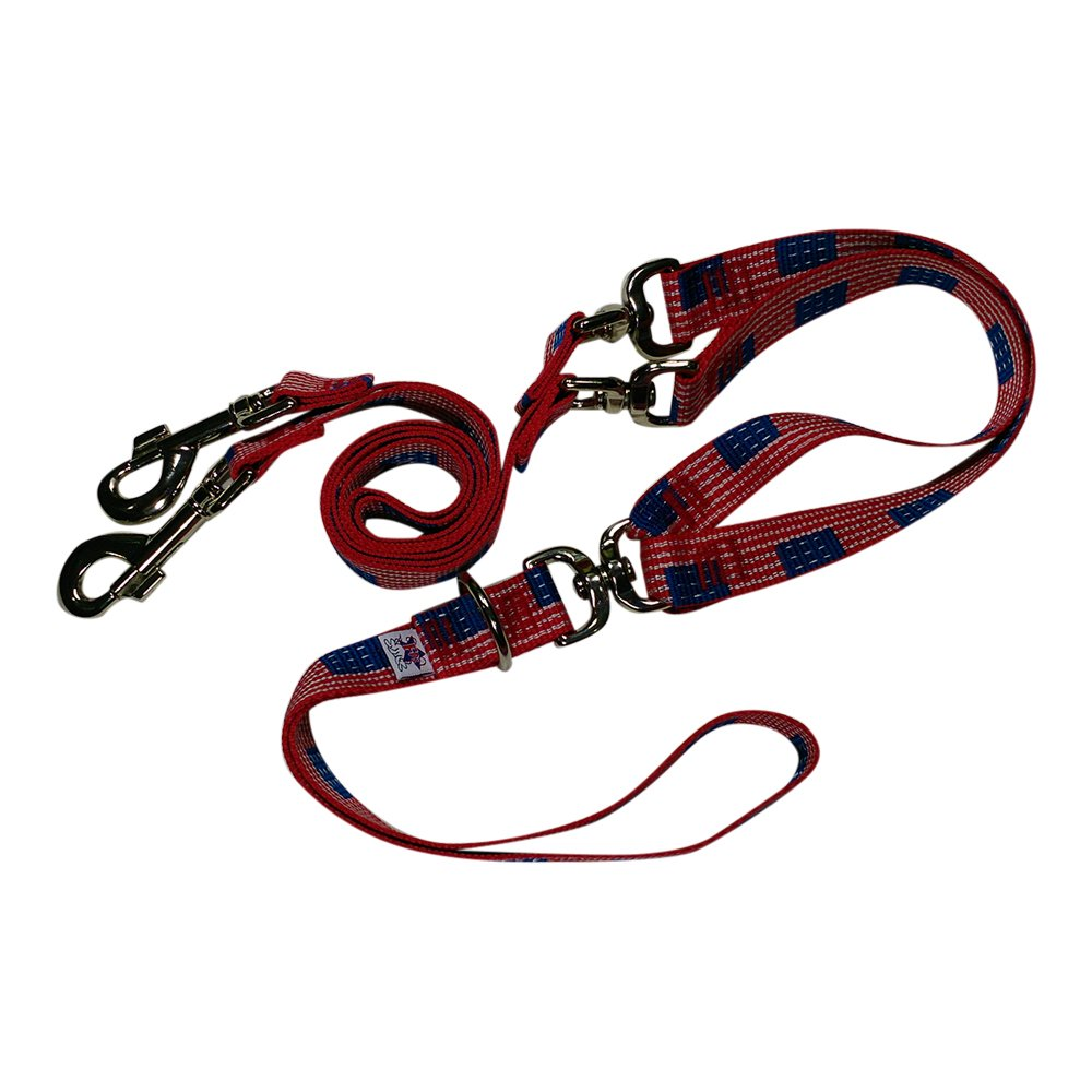 Beast-Master Double Dog Tangle-Less Leash BM-PP-DDTL15 (USA Flag) by Beast-Master