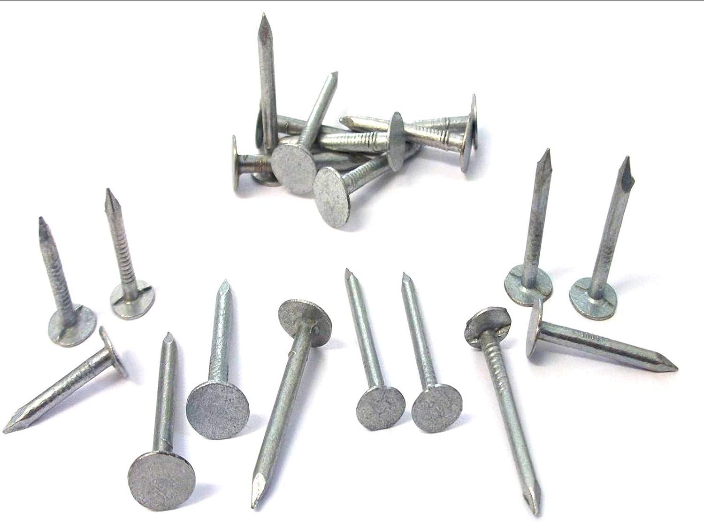 20 mm Clavos galvanizados 25 mm 30 mm. Clavos de fieltro para tejado de cobertizo