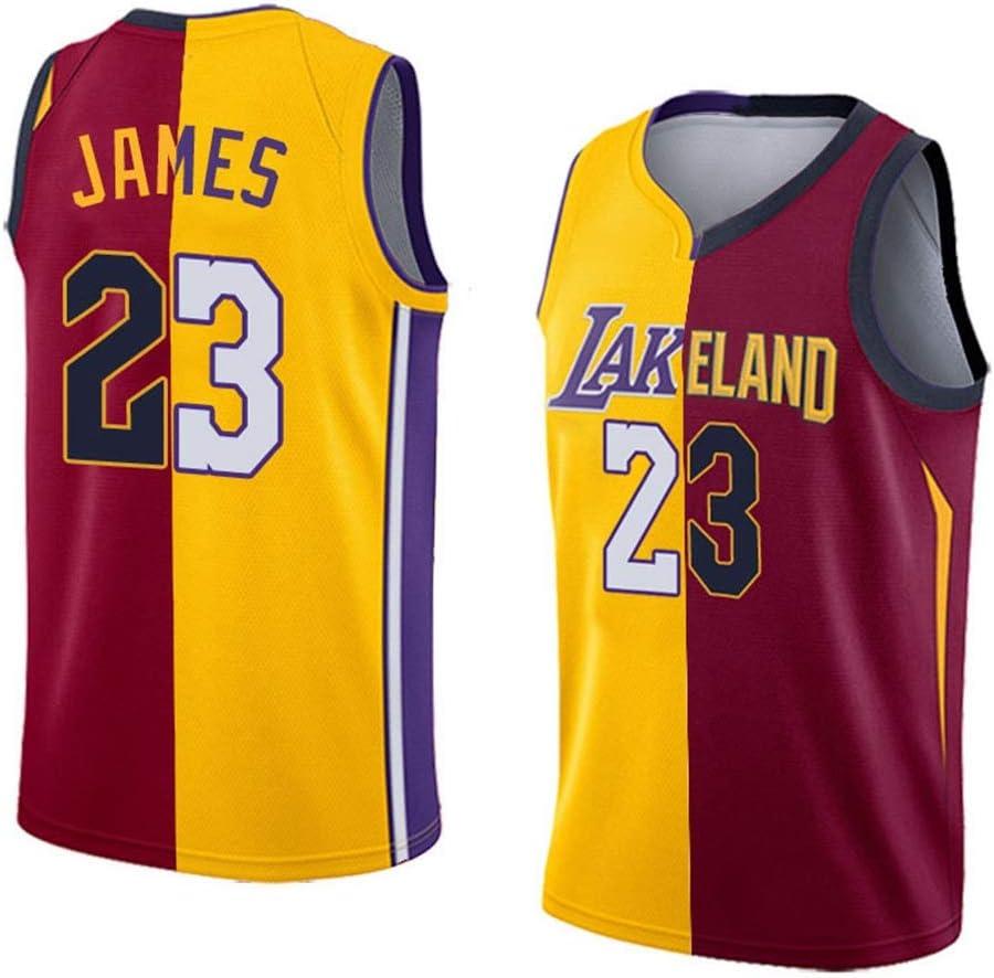 NBA Lebron James # 23 Cleveland Cavaliers Los Angeles ...