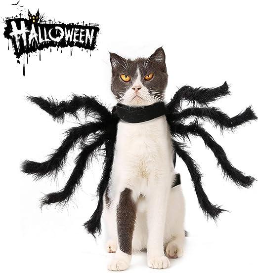 ZHAZA Disfraz de Arañas Mascotas, Simulación de Animales de ...