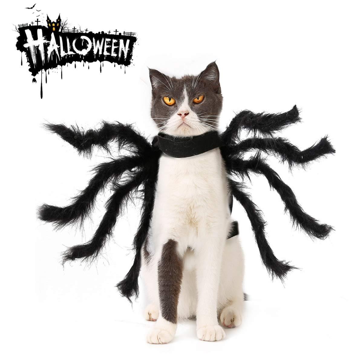 Disfraz de Arañas Mascotas, Simulación de Animales de Halloween ...