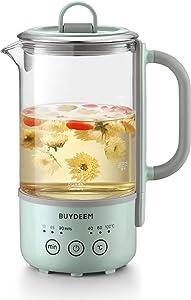 BUYDEEM K313 Travel Electric Kettle, Mini Healthy-Care Beverage Kettle, Tea Maker with German Schott Glass & Durable Pro 18/10 Pro Stainless Steel, 0.6L, Cozy Greenish