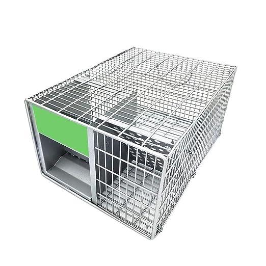 Trampa para ratones con jaula, trampa para ratones humanizada ...