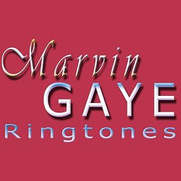 marvin gaye lets get it on free ringtone download