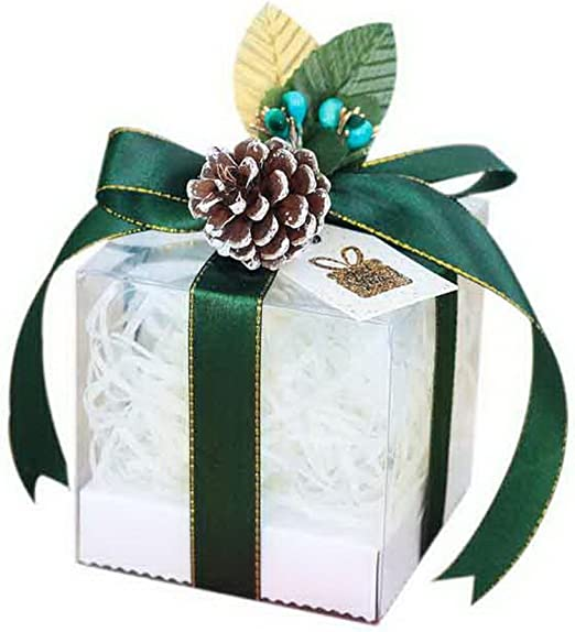 Spicy Meow 10 Piezas de Cajas de Manzana de Navidad Caja de Regalo ...