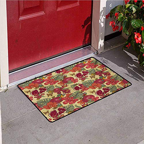 Jinguizi Red Universal Door mat Natural Tropical and Exotic Birds Butterflies Flowers and Pomegranate Illustration Door mat Floor Decoration W31.5 x L47.2 Inch Red and Beige