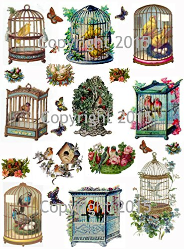 Vintage Victorian Birdcages Collage Sheet Art Images for Decoupage, Scrapbooking, Jewelry Making (Vintage Decoupage)
