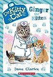 #10: Ginger the Kitten (Dr. KittyCat #9)