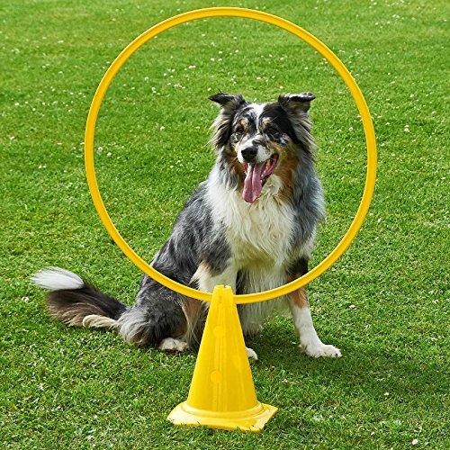 Kombi-Kegel 30 mit Kombi-Ring 70 cm, in 4 Farben, für Agility - Hundetraining (gelb)