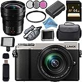 Panasonic Lumix DC-GX9 Mirrorless Micro Four Thirds Digital Camera with 12-60mm Lens (Silver) + Panasonic Leica DG Vario-Elmarit 8-18mm f/2.8-4 ASPH. Lens Bundle