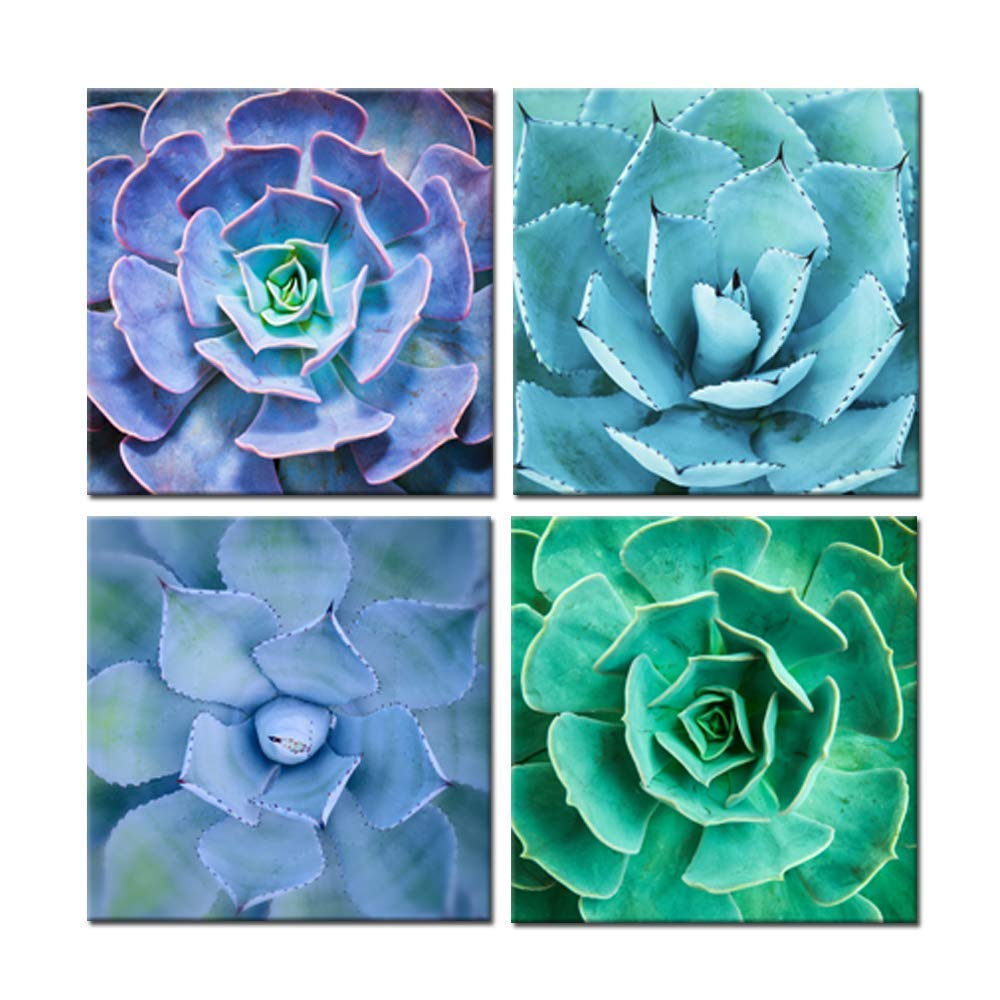 7fc16229068 iKNOW FOTO Canvas Set of 4 Wall Art Green Blue Succulent Plant Pictures  Giclee Prints Botanical Photography Gallery Wrap Modern Home Decor Ready to  Hang ...