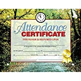 Attendance Certificate (Set of 30)