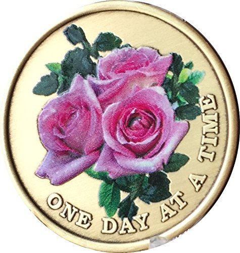Pink Rose One Day At A Time Color Medallion Serenity Prayer Chip