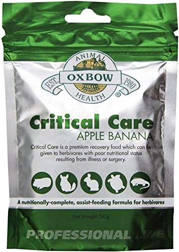 Oxbow Critical Care Apple Banana Pet Supplement, 141gm 2-Pack