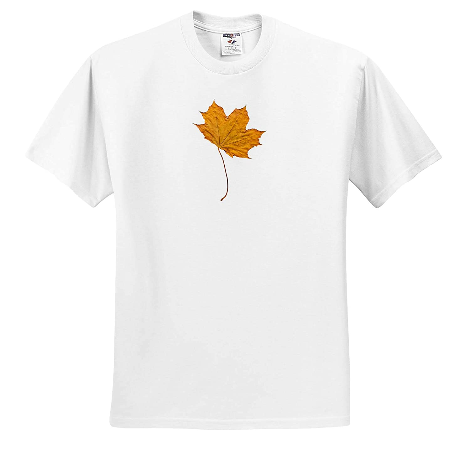 3dRose Lens Art by Florene T-Shirts Image of One Large Gold Maple Leaf Everything Gold