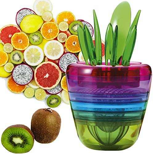 Microtimes Multi Functional Creative Fruits Plant Salad Machine Multi-Function Slicer Set, 10 in 1 fruit cutter Great Idea for cutting fruit Best Unique Cool Home Kitchen Tools set