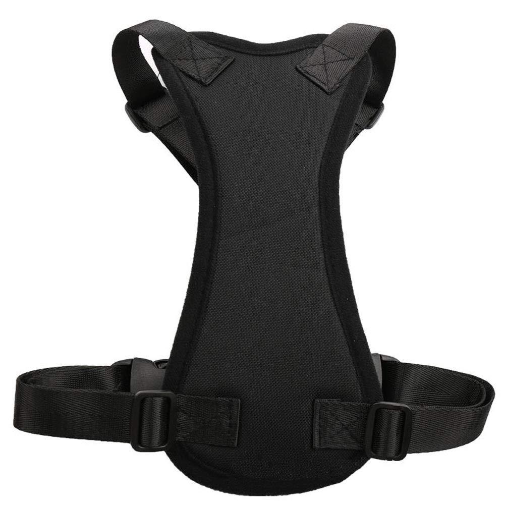 L-SLWI Dog Chest Strap, Medium/Large Dog Leash Collar car seat Belt Small Dog Leash, pet Supplies,Black,S