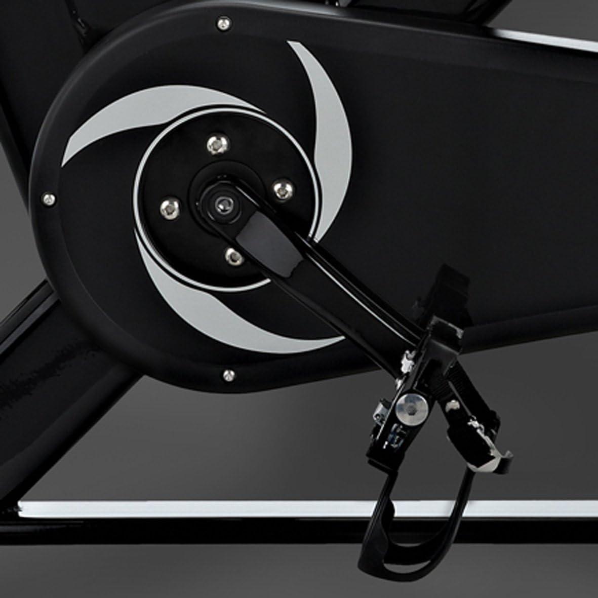 Tomahawk - Bicicleta de Spinning Profesional Eseries: Amazon.es ...