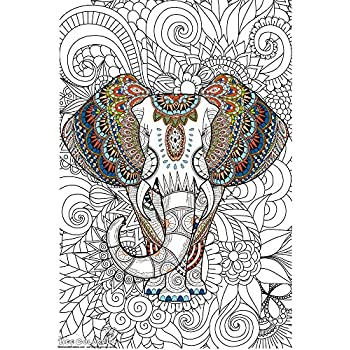 Amazon.com: Great2bColorful Really Big Coloring Poster (60\'\'x 36 ...