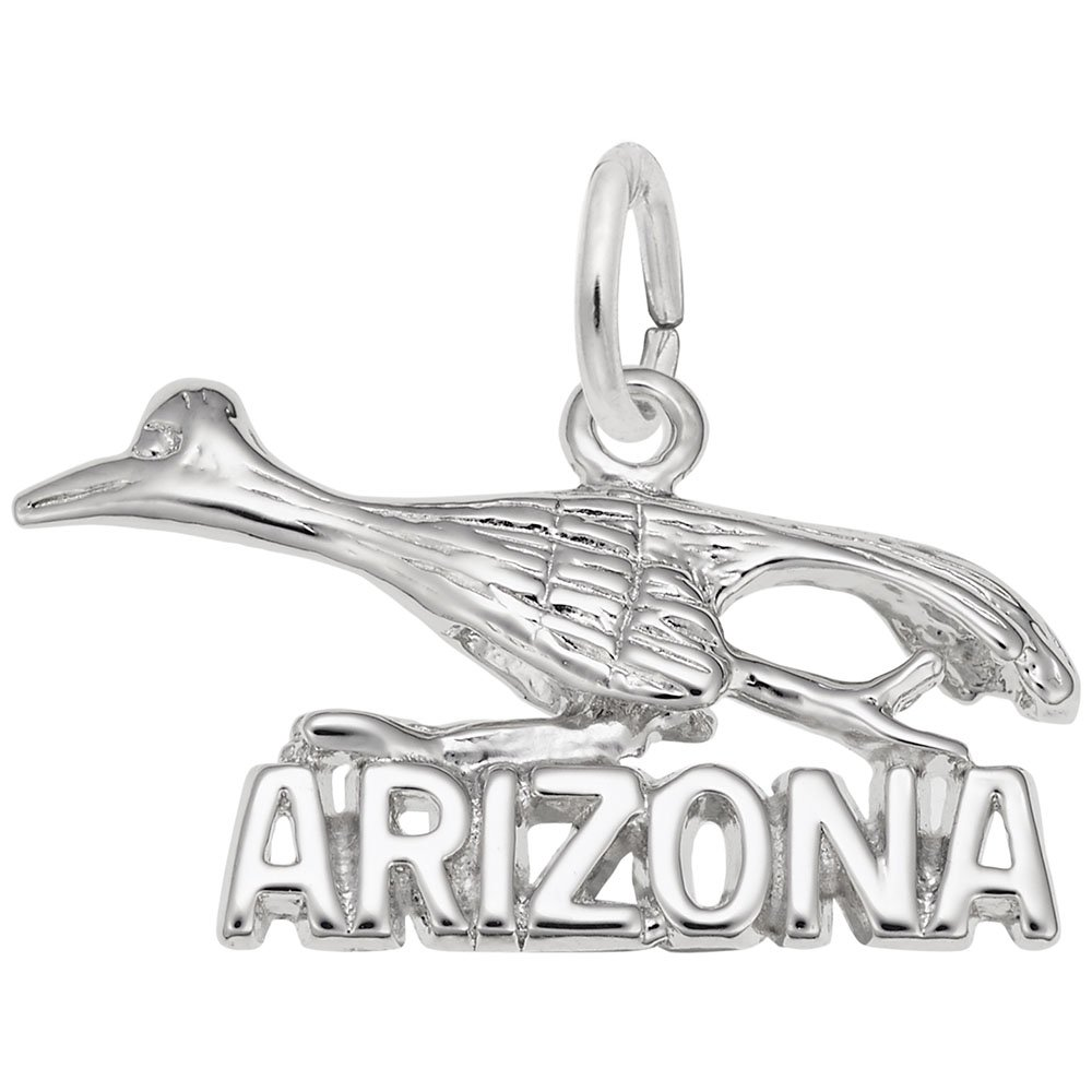 Vintage Large Arizona Sterling Silver Charm with Road Runner