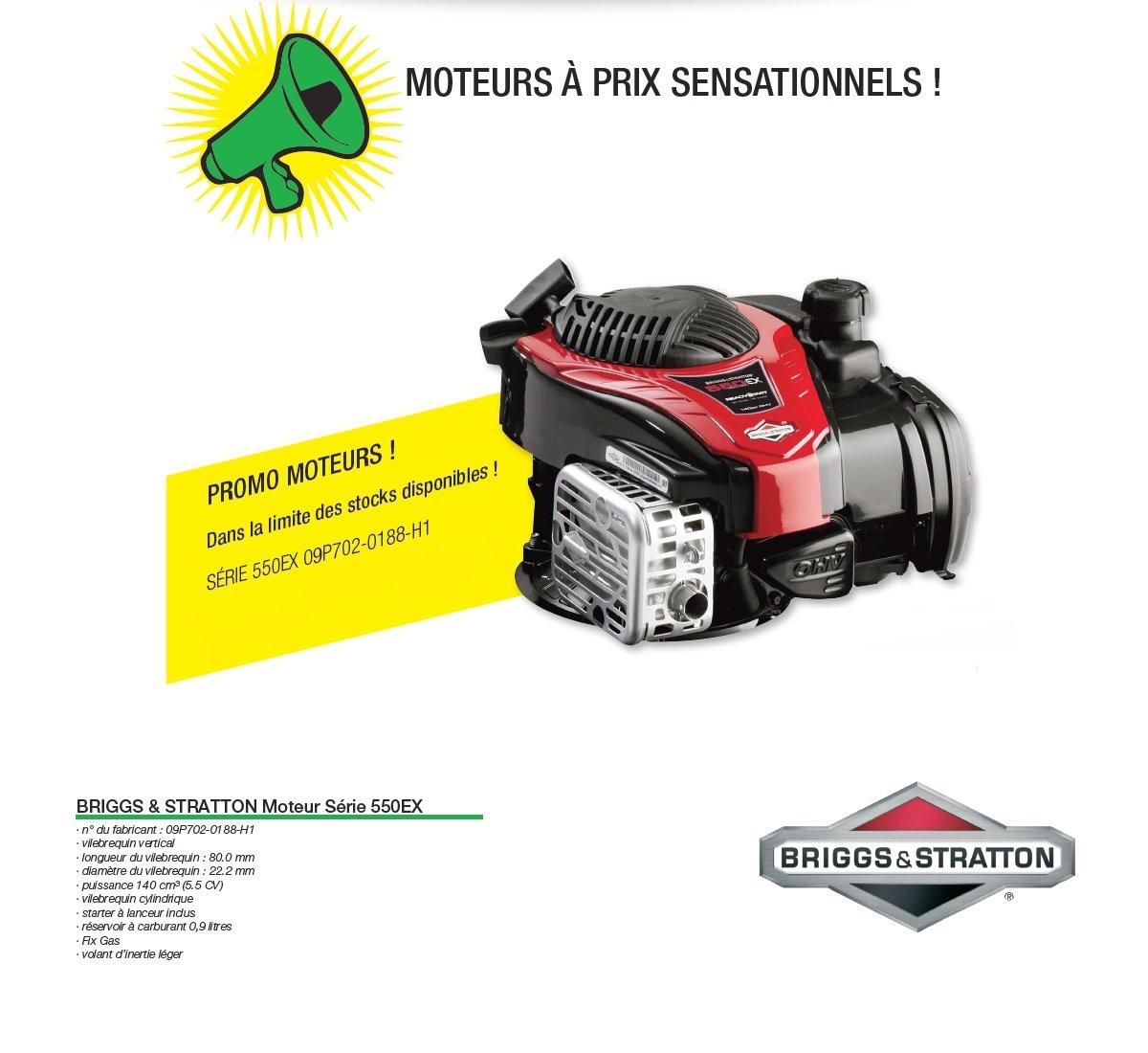Motor Briggs Stratton serie 550EX para cortadora de césped: Amazon ...