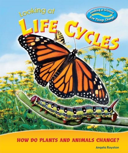 Looking at Life Cycles: How Do Plants and Animals Change? (Looking at Science: How Things Change)