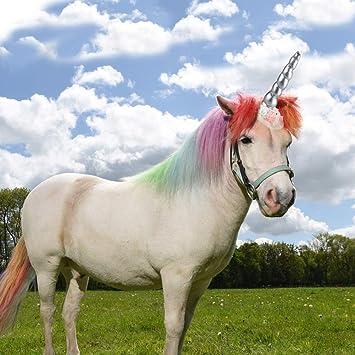 My Little Pony tail Black beauty hair tie on unicorn horse cosplay halloween