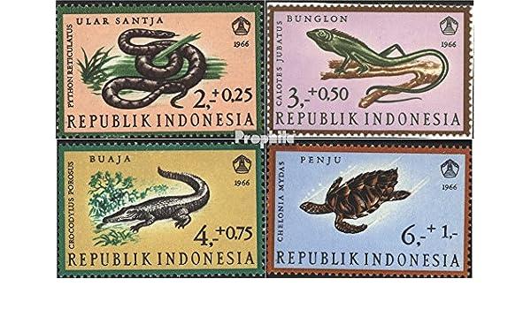 Prophila Collection Indonesia Michel.-No..: 558-561 (Completa.edición.) 1966 Reptiles (Sellos para los coleccionistas) Anfibios / Reptiles / Dinosaurio: Amazon.es: Juguetes y juegos