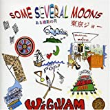 Some Several Moons by Wigwam